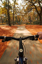 Cycling through fall colors Royalty Free Stock Photo