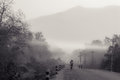 Cycling in the mist Royalty Free Stock Photo