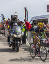 The cyclist alberto contador on mont ventoux france july spanish team saxo thinkoff climbing last kilometer of ascension to Stock Image