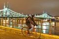 Cyclist moving next to river danube at night Royalty Free Stock Photography