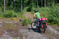 Cyclist practicing mountain bike on a forest trail Royalty Free Stock Photo