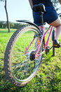 Cyclist riding on bicycle. Rear wide angle view Royalty Free Stock Photo