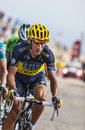 The cyclist roman kreuziger mont ventoux france july czech cyclis team saxo thinkoff climbing last kilometer of ascension to mont Stock Photos