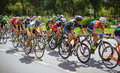Cyclists competing in rgt road grand tour champions race bucharest romania Stock Photo