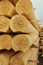 Cylindrical logs Royalty Free Stock Photo