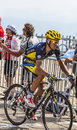 The cylist alberto contador mont ventoux france july spanish cyclist team saxo thinkoff climbing last kilometer of ascension to Royalty Free Stock Photos