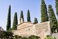 Cypress balearic majorca churchyard elegant cypresses at a spain Royalty Free Stock Photography