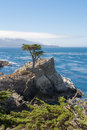 The cypress on the rock a view of a Royalty Free Stock Photos