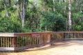 Cypress Swamp Boardwalk Royalty Free Stock Photo
