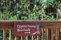 Cypress Swamp Boardwalk Sign Royalty Free Stock Photo
