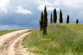 Cypress trees alonside a footpath up the tuscan hills near pienza Stock Image
