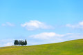 Cypress trees and field rural landscape in Crete Senesi, Tuscany. Italy Stock Image