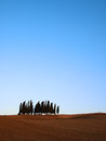 Cypress trees typical tuscany landscape with a group of and rolling hills in autumn in val d'orcia italy Stock Images