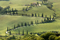Cypresses and roads of tuscany along a curving road in near al foce Stock Photo