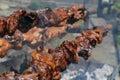 Cyprus Kebab ( Souvla ) Royalty Free Stock Photo