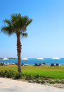 Cyprus sunny day on pafos resort Royalty Free Stock Images
