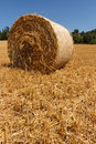 Czech landscape with straw bale hay roll Royalty Free Stock Photo