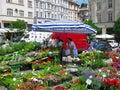 Selling flowers in the street market