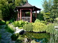 Czech republic view lagoon fish gazebo bonsai centrum Royalty Free Stock Photography