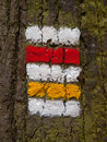 Czech tourist signage red and yellow mark on the tree bark Royalty Free Stock Images