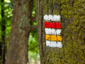 Czech tourist signage red and yellow mark on the tree bark Royalty Free Stock Photo