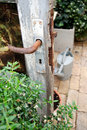 Dörrväxthusromantiker Royaltyfri Fotografi