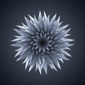 D abstract organic shape virus macro cybernetic flower or star Royalty Free Stock Images