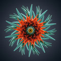 D abstract organic shape virus macro cybernetic flower or star Stock Images