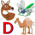 D deer, dragonfly, dromedary Stock Photo