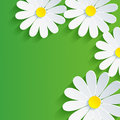 D flower chamomile spring abstract background vector floral vector illustration Royalty Free Stock Photo