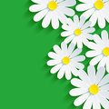 D flower chamomile spring background abstract floral vector green vector illustration Stock Photo