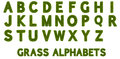 D grass alphabets render of set isolated on white background Royalty Free Stock Image
