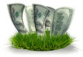 D hundred dollar bills growing grass isolated over white Royalty Free Stock Image