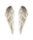 3d Illustration of Angel Wings Isolated on white background Royalty Free Stock Photo