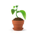 3D illustration. Flower in a pot Royalty Free Stock Photo