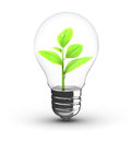 D illustration green plant inside light bulb over white background Stock Image