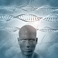 D medical background with dna strands and man male face Royalty Free Stock Image