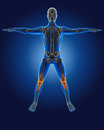 D medical man with skeleton knees highlighted Royalty Free Stock Photos