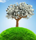 D money growing on trees a tree financial concepts Stock Images