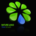 D nature logo glossy logotype with leafs and water drop isolated on a black background Stock Images