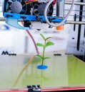 3d printer of the device during the processe. Young Plant Growing
