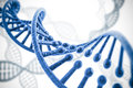 D render of dna structure abstract background Royalty Free Stock Photo
