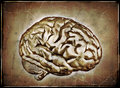D render human brain digitally manipulated to look like old worn print Stock Photos