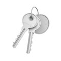 3d rendering of two isolated silver keys on a key ring with a blank round medal behind. Royalty Free Stock Photo