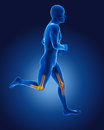 D running medical man skeleton knees highlighted Royalty Free Stock Images