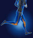 D running medical man with skeleton knees highlighted Stock Photo