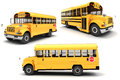 D school bus on white background Royalty Free Stock Images
