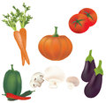 D set of vector vegetables illustration collection of tomatoes peppers pumpkin mushrooms carrot eggplant Royalty Free Stock Photography