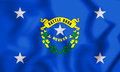 3D Standard of the Governor of Nevada, USA.
