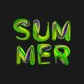 3d summer text .Vector.Eps 10.